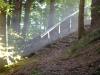 www.KÖRPERBEHANDLUNGEN.at / Herbstidylle