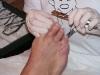 Kürzen der Zehennägel mit einer speziellen Nagelzange.